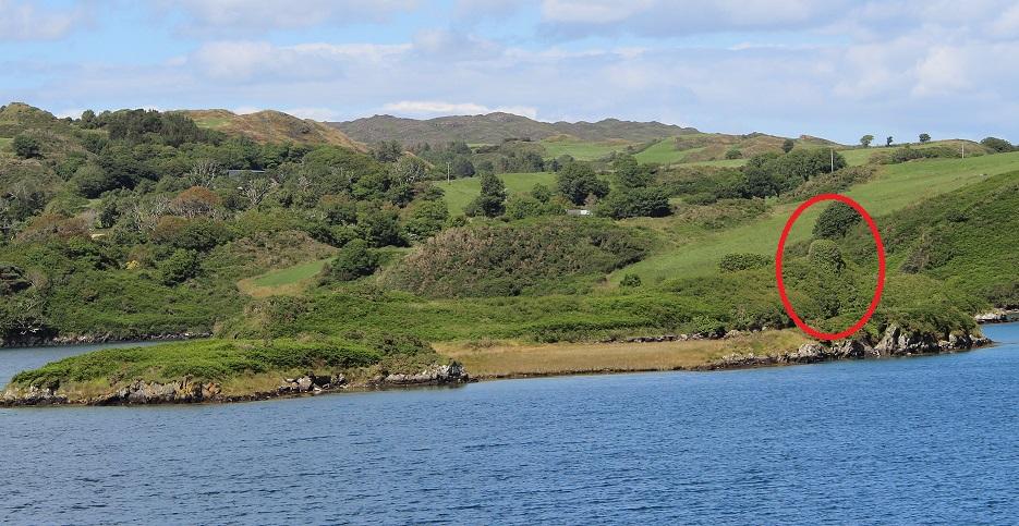 Lough Ine