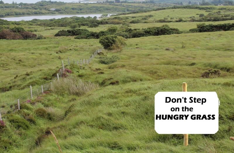 hungrygrass