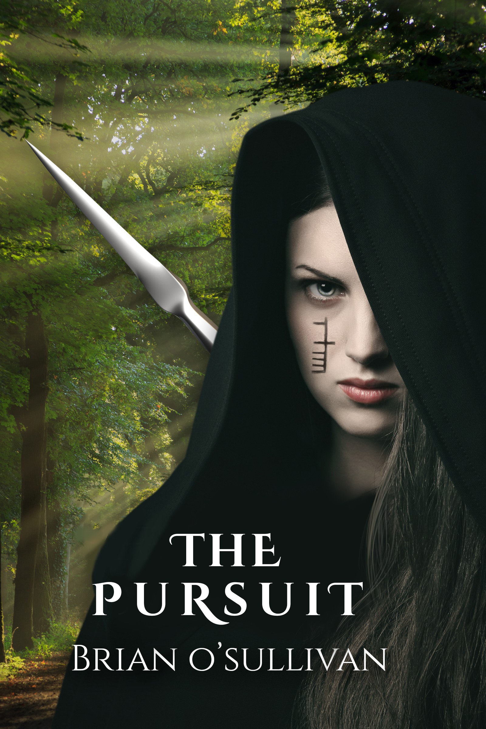 Liath Luachra: The Pursuit
